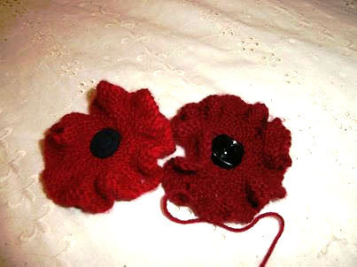 Untitled-1Wendy's PoppiesWendy's Poppies