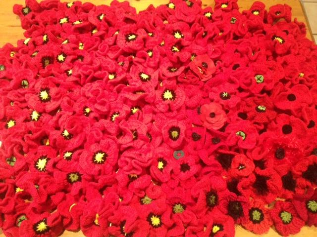 Poppy Image 1