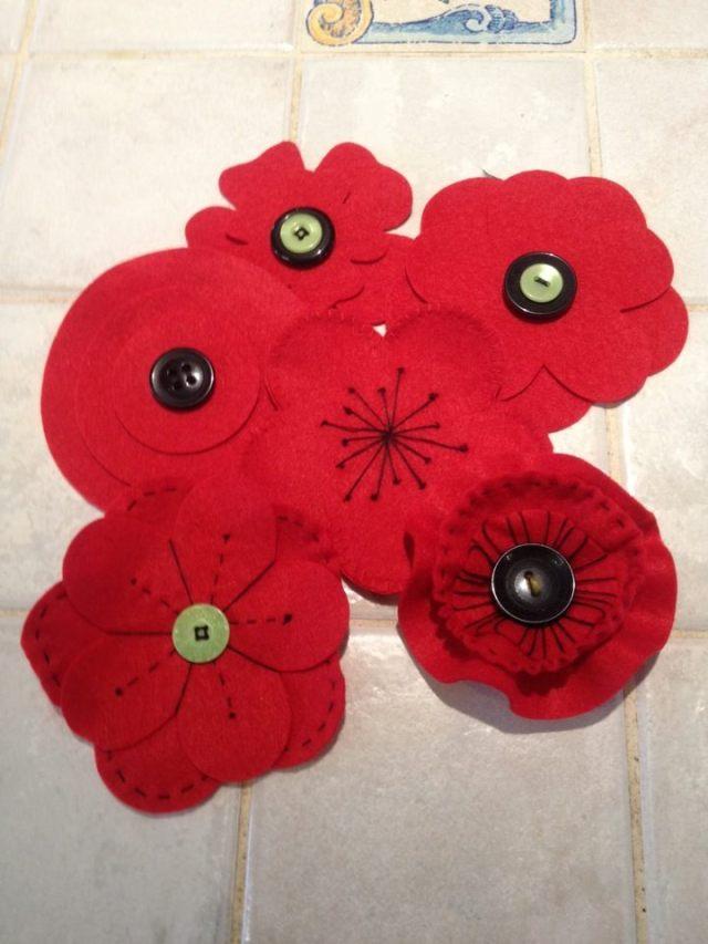 Lynn's poppies