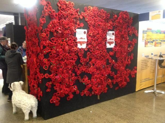 Bendigo Wool & Sheep Show Display