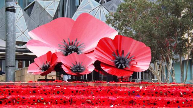 5000 poppies a community tribute of respect and remembrance and just for nostalgias sake here is a jump back in time for you to anzac day 2015 mightylinksfo
