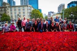 The Amazing 5000 Poppies Team