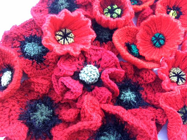 poppies-091408
