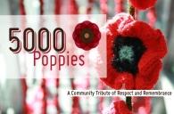 5000 Poppies