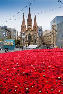 Lynn Berry's stunning Anzac tribute '5,000 Poppies Project', designed by Australia's most awarded landscape team Phillip Johnson Landscapes, is unveiled at Federal Square, Melbourne.